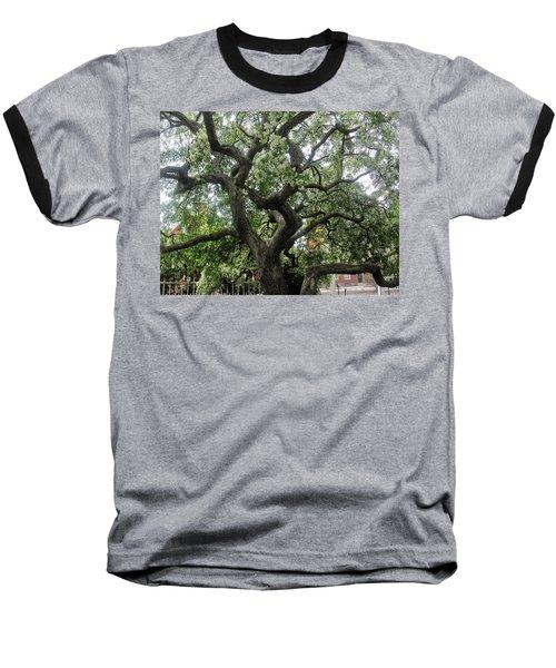Natures Strength Baseball T-Shirt by Paul Meinerth