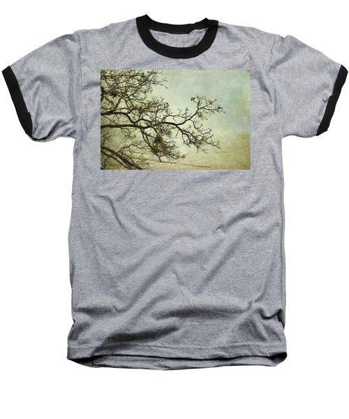 Nearly Bare Branches Baseball T-Shirt