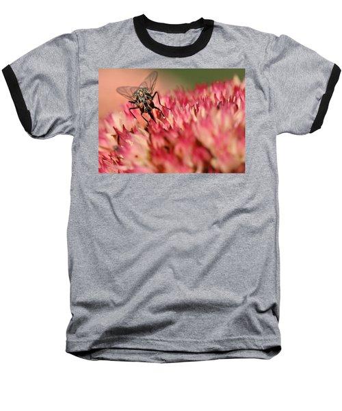 Nectar Hunt Baseball T-Shirt