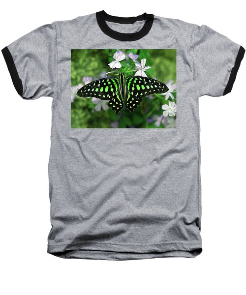 Neon --- Tailed Jay Butterfly Baseball T-Shirt