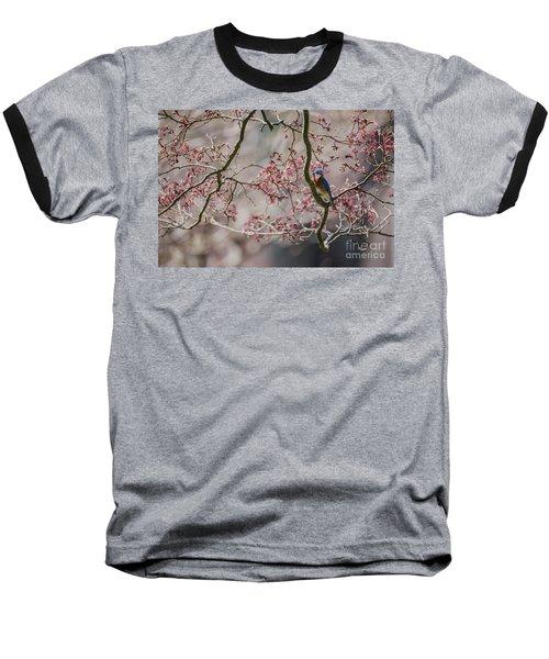 Nest Scouting Baseball T-Shirt