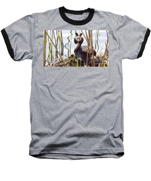 Nesting Grebe Baseball T-Shirt