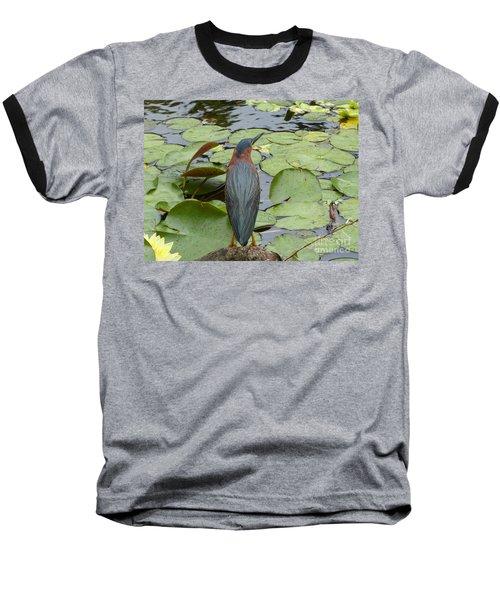 Nevis Bird Observes Baseball T-Shirt