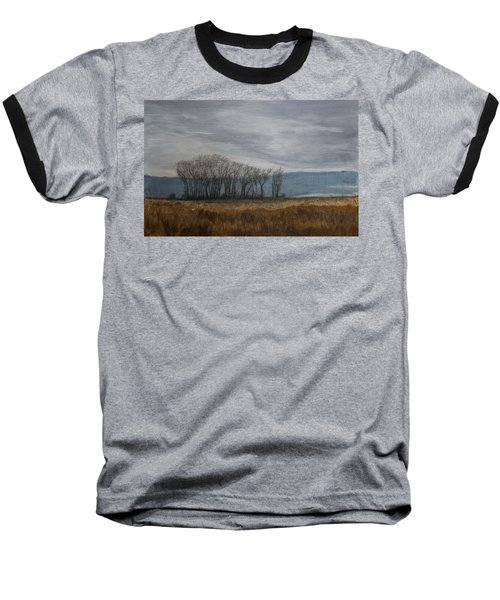 New Buffalo Marsh Baseball T-Shirt by John Hansen