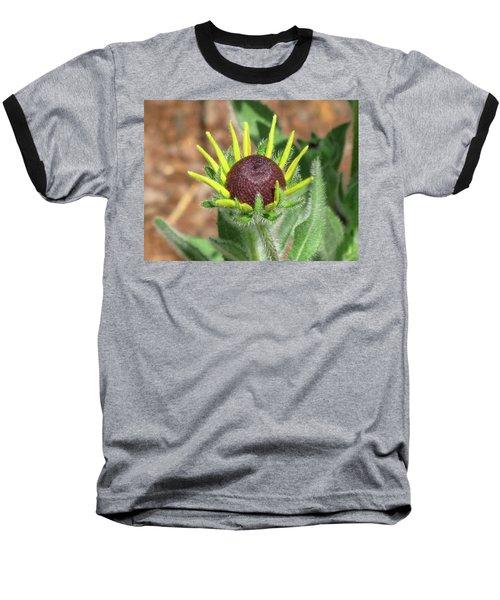 New Daisy Baseball T-Shirt by Michele Wilson