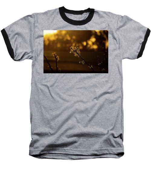 New Growth Baseball T-Shirt