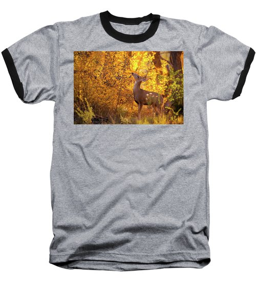New Mexico Buck Browsing Baseball T-Shirt