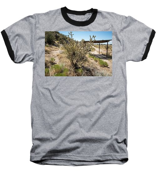 New Mexico Cholla Baseball T-Shirt