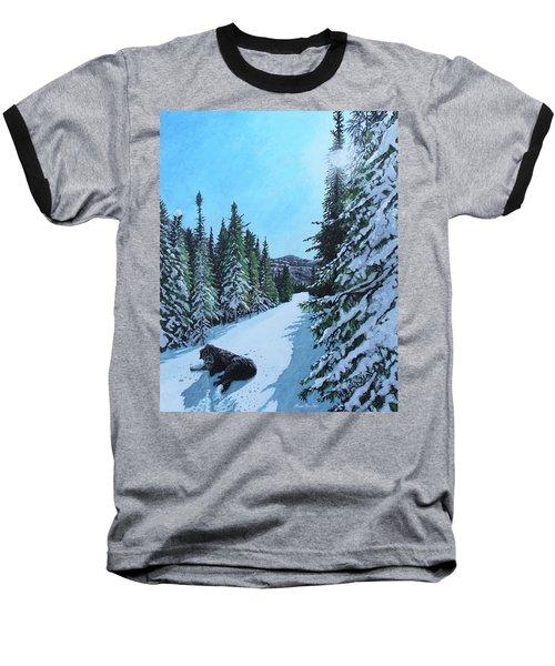 Newfoundland In Labrador II Baseball T-Shirt