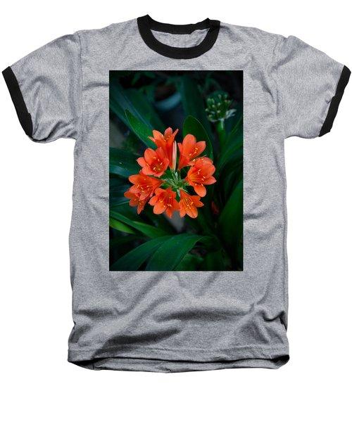 Nice Baseball T-Shirt