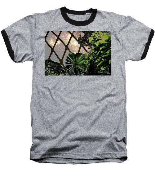 Night In The Arboretum Baseball T-Shirt by Deborah Nakano