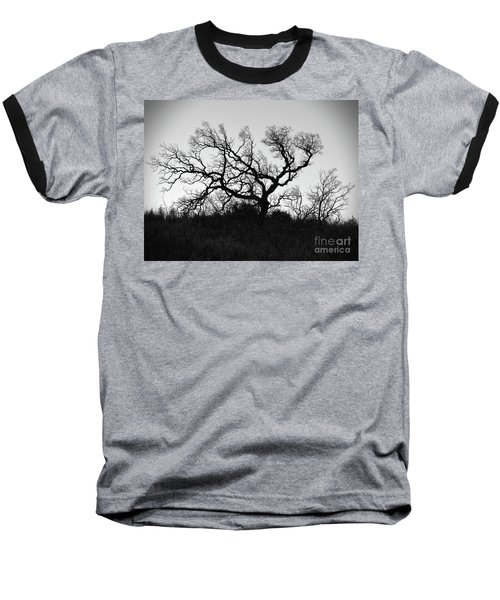 Nightmare Tree Baseball T-Shirt