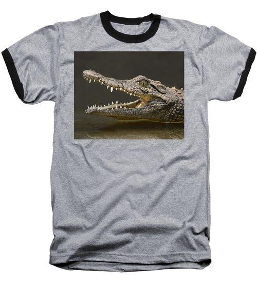 Nile Crocodile Baseball T-Shirt by Tony Beck
