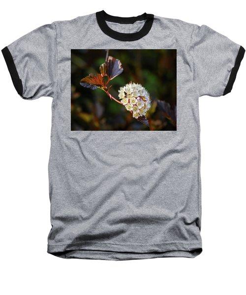 Ninebark Summer Wine Baseball T-Shirt