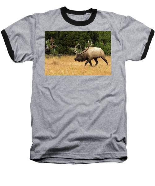 No You Don't Baseball T-Shirt