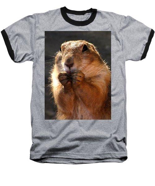 Snacking Prairie Dog Baseball T-Shirt