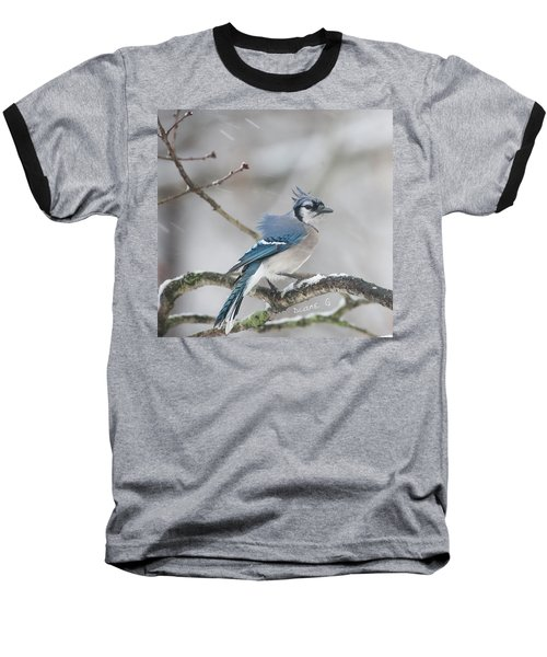 Nor' Easter Blue Jay Baseball T-Shirt