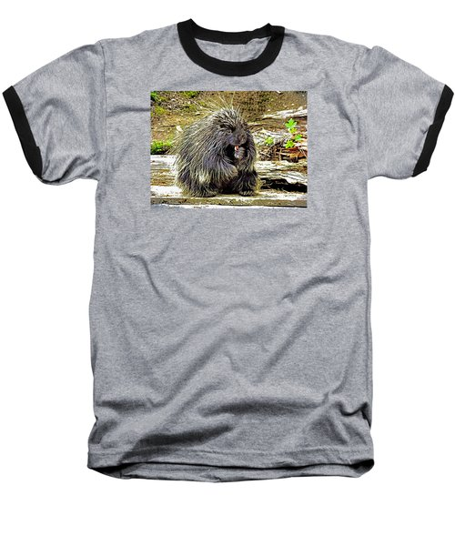 Baseball T-Shirt featuring the photograph North American Porcupine by Kathy Kelly