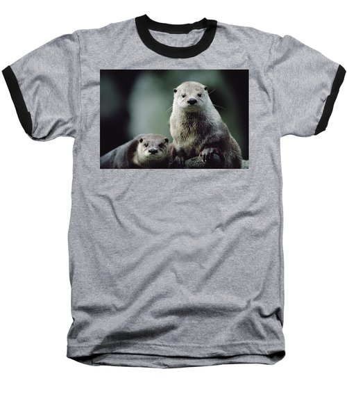 North American River Otter Lontra Baseball T-Shirt