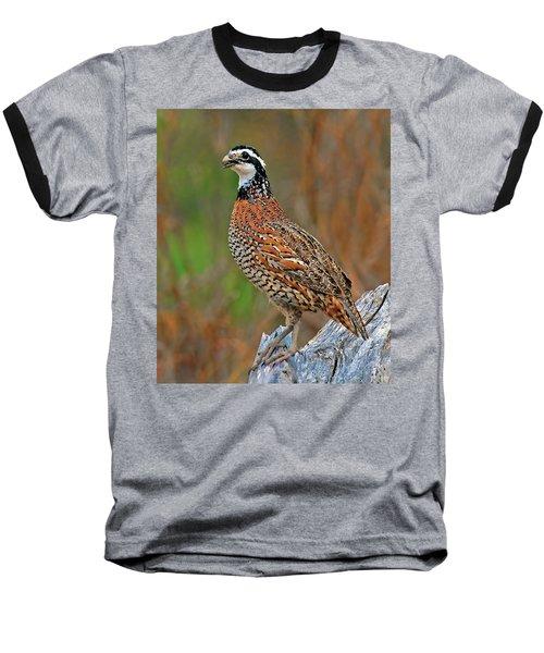 Northern Bobwhite Baseball T-Shirt