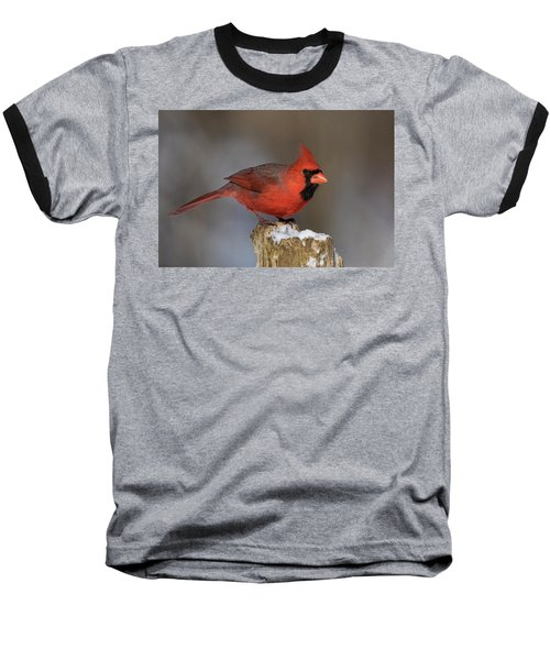 Baseball T-Shirt featuring the photograph Northern Cardinal In Winter by Mircea Costina Photography