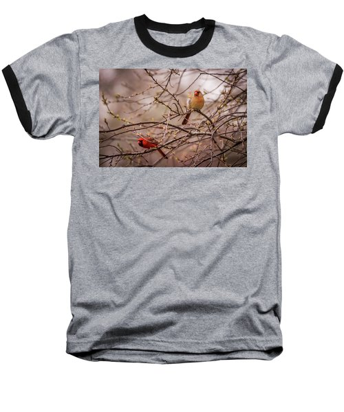 Baseball T-Shirt featuring the photograph Northern Cardinal Pair In Spring by Terry DeLuco