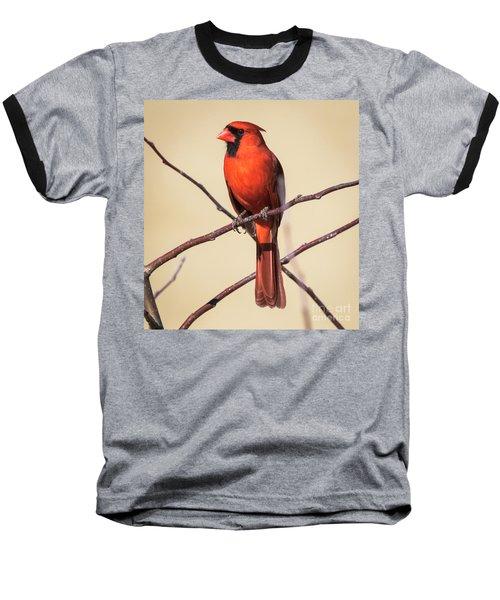 Northern Cardinal Profile Baseball T-Shirt