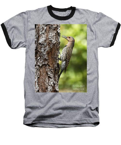 Northern Flicker On The Hunt Baseball T-Shirt