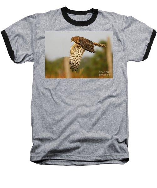 Northern Harrier Flight Baseball T-Shirt