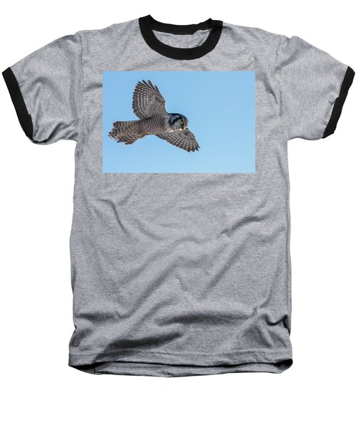 Baseball T-Shirt featuring the photograph Northern Hawk Owl Hunting by Mircea Costina Photography
