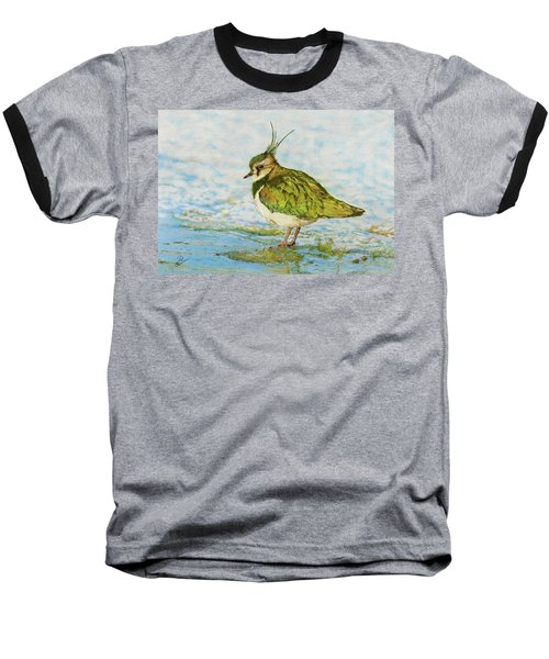 Northern Lapwing Baseball T-Shirt by John Birnie