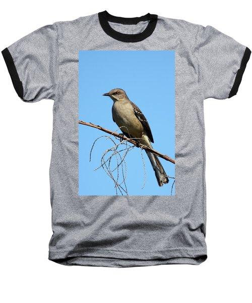 Northern Mockingbird Baseball T-Shirt by Bruce J Robinson