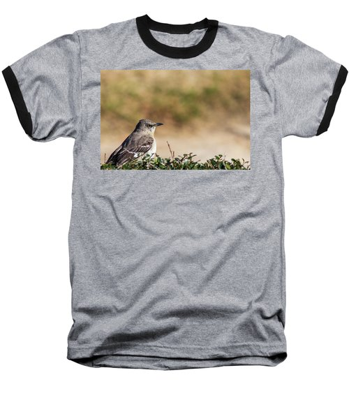 Northern Mockingbird Sitting On Top Of A Hedge Baseball T-Shirt