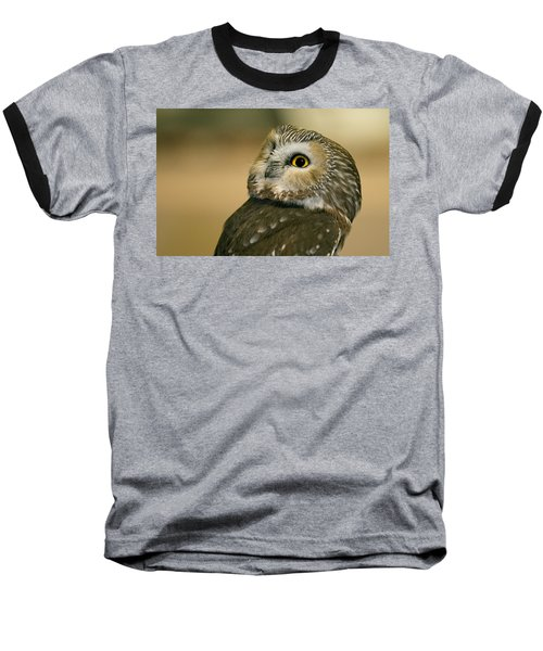 Northern Saw-whet Owl Baseball T-Shirt