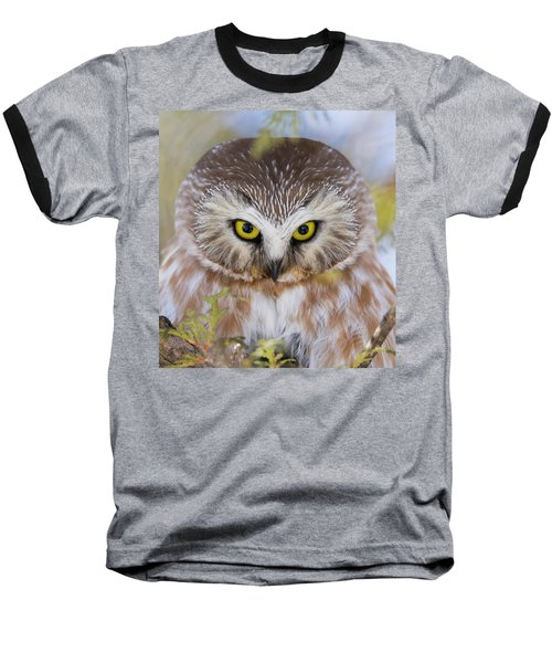 Baseball T-Shirt featuring the photograph Northern Saw-whet Owl Portrait by Mircea Costina Photography