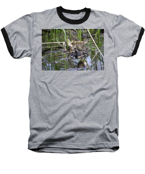 Northern Waterthrush Baseball T-Shirt
