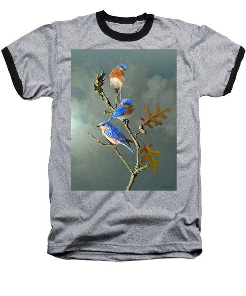 Nothing But Bluebirds Baseball T-Shirt