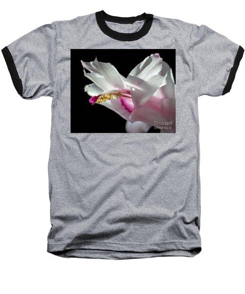 November Splendor Baseball T-Shirt by Amy Porter