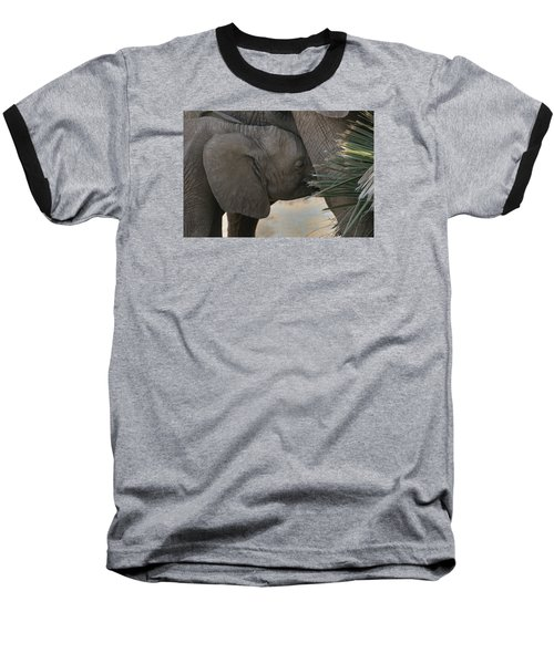 Baseball T-Shirt featuring the photograph Nursing Elephant Calf by Gary Hall