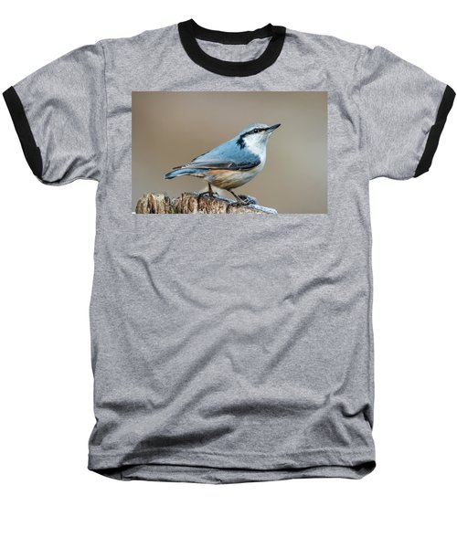 Nuthatch's Pose Baseball T-Shirt by Torbjorn Swenelius