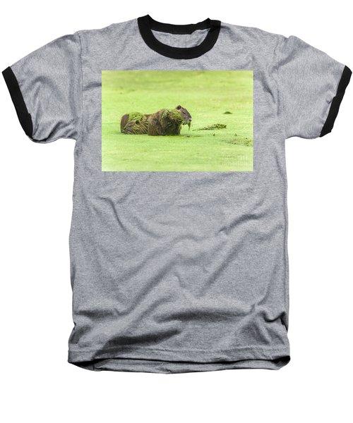 Nutria In A Pesto Sauce Baseball T-Shirt by Robert Frederick