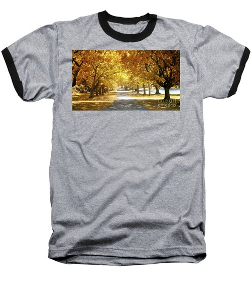 Oak Tree Avenue In Autumn Baseball T-Shirt
