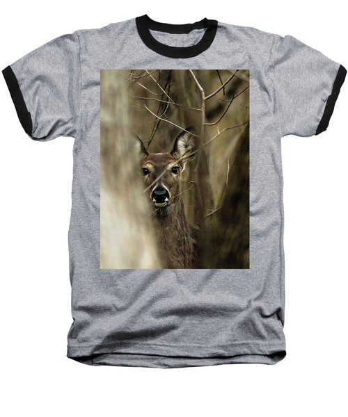 Observed  Baseball T-Shirt by Bruce Patrick Smith