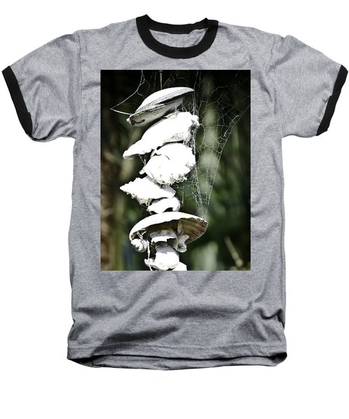 Baseball T-Shirt featuring the photograph Ocean Shells Composition by Yurix Sardinelly
