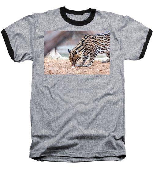 Ocelot And Egg Baseball T-Shirt