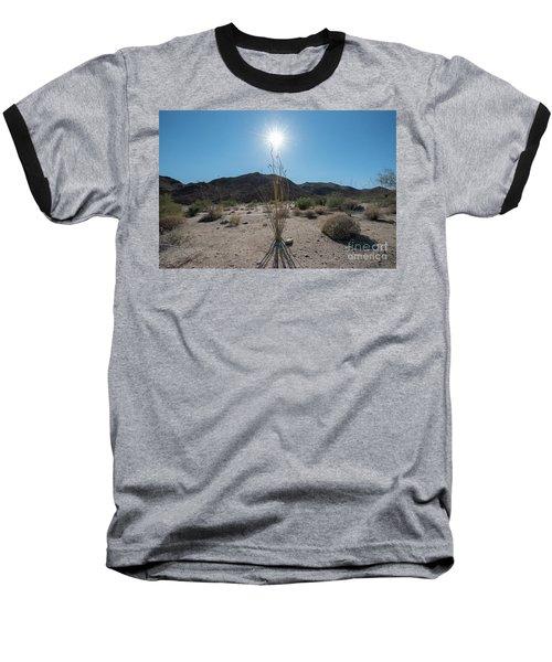 Ocotillo Glow Baseball T-Shirt by Robert Loe