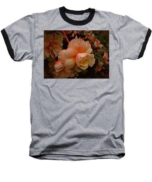 Vintage Begonia No. 2 Baseball T-Shirt by Richard Cummings