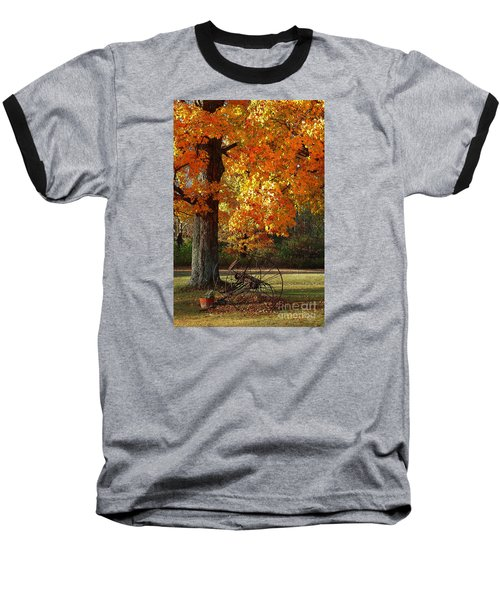 October Day Baseball T-Shirt by Diane E Berry