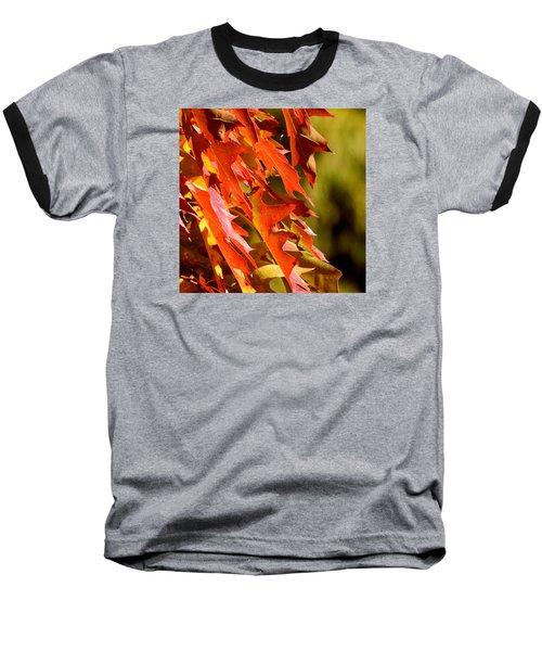 October Oak Leaves Baseball T-Shirt