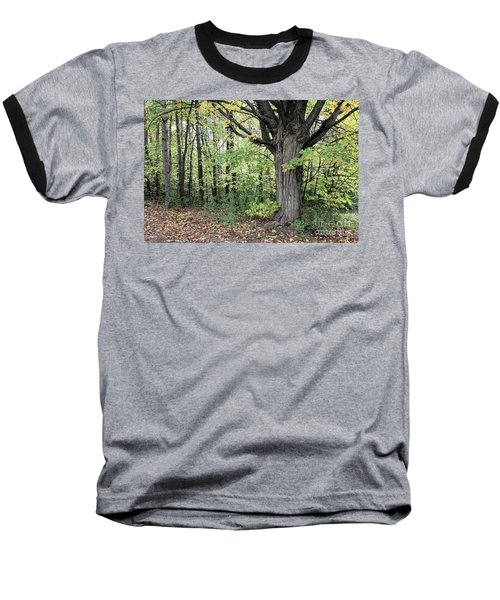 October Trees Baseball T-Shirt